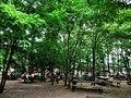 Prinzessinnengarten 1 (39404809252).jpg