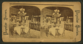 Private Dining Room in the White House, Washington, D.C, from Robert N. Dennis collection of stereoscopic views.png