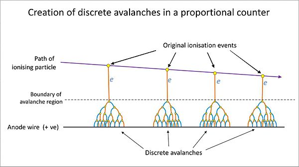 The generation of discrete Townsend avalanches in a proportional counter. Proportional counter avalanches.jpg