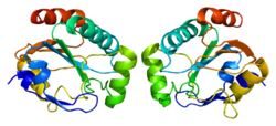 Protein GPX7 PDB 2p31.png