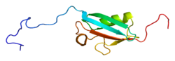 Protein SUMO1 PDB 1a5r.png