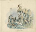 Proteus 1893 - Birth-of-the-harp-Wainamoinen-wisdom-singer.png