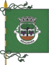 Flag of Mealhada