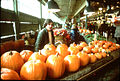 Pumpkin vendor at Pike Place Market, 1978 (15651476586).jpg