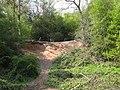 Quarry near Keeper's Pool, Sutton Park - geograph.org.uk - 1859888.jpg