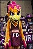 Queensland Netball Firebirds parade day-02 (19201100111).jpg