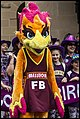 Queensland Netball Firebirds parade day-02 (19201100111).jpg