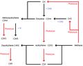 Réactions chimiques dans les atmosphères réductrices - voies du CH.png