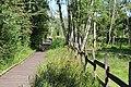 Réserve naturelle Marais Lavours Aignoz Ceyzérieu 13.jpg