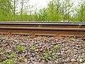 Rail HY 00 UC 60.jpg