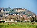 Ray-sur-Saône. Panorama rapproché.jpg