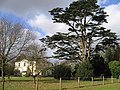 Rectory Meadow, Bramerton - geograph.org.uk - 122452.jpg