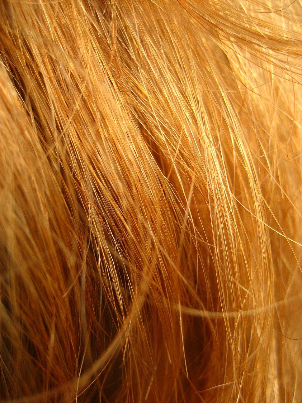 Redhead close up