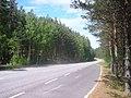 Regional road 314 on Pulkkilanharju.jpg