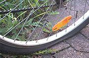 Reifendefekt Fahrrad
