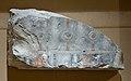 Relief fragment with a khekher frieze MET 12.180.248 3115.jpg