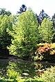 Rhododendronpark Bremen 20090513 089.JPG