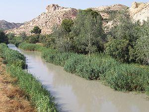 Archena - The Segura river passing through Archena.