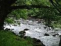River Braan, Perthshire - geograph.org.uk - 83403.jpg