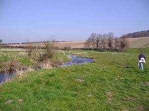 River Glaven - The river meanders across water meadows between Letheringsett and Glandford