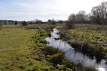 River Purwell in Purwell Meadows 1.JPG