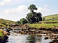 River Wharfe at Yockenthwaite - geograph.org.uk - 553056.jpg
