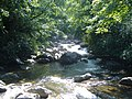 River along Chimney Tops trail - panoramio.jpg