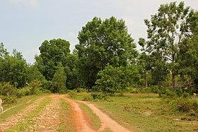 Roads. Ream National Park.jpg
