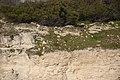 Robben Island coast (01).jpg