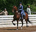 Rock Creek Spring Horse Show 2008 (2673756951).jpg