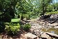 Rock Quarry Garden, Greenville SC June 2019 2.jpg