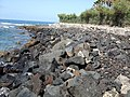 Rocky beach - panoramio - Voytazz86.jpg