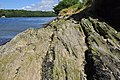 Rocky foreshore - River Tamar - geograph.org.uk - 1394345.jpg