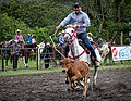 Rodeo Event Calf Roping 36.jpg