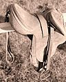 Rodeo saddle.jpg