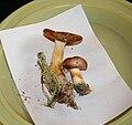 Russula puellaris 1.jpg