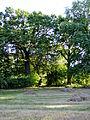 Ruszcza, park, 1 poł. XIX, XIX XX w., 643803 (1).JPG