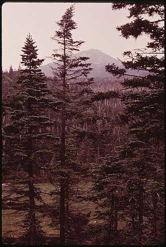 Anne LaBastille - Image: SUMMIT OF MOUNT MARCY, NEW YORK, FROM LAKE TEAR OF THE CLOUDS, SOURCE OF THE HUDSON RIVER, IN THE ADIRONDACK FOREST... NARA 554461