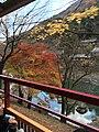 Sagakameyamacho, Ukyo Ward, Kyoto, Kyoto Prefecture 616-8387, Japan - panoramio (1).jpg