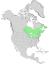 Salix lucida range map 0.png