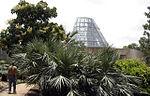 San Antonio Botanical Garden 01697.JPG