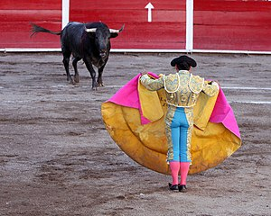 Feria Nacional de San Marcos - Bullfight at the 2010 Fair