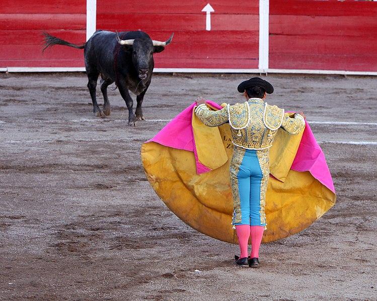 Fișier:San marcos bullfight 01.jpg