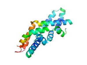 Saposin protein domain - Image: Saposin C 2qyp