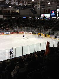 Sarnia Sting vs. Windsor Spitfires - Jan. 2012