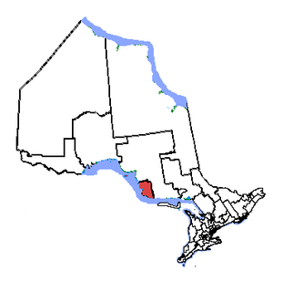 Sault Ste. Marie (electoral district) Federal electoral district