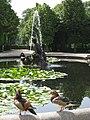 Schloss Schoenbrunn Mandarinenten.jpg