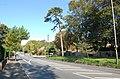Sedlescombe Road North - geograph.org.uk - 985675.jpg