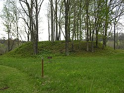 Sellars Indian Mound.jpg