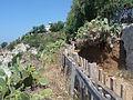 Sentiero panoramico a Capo Vaticano con faro.JPG